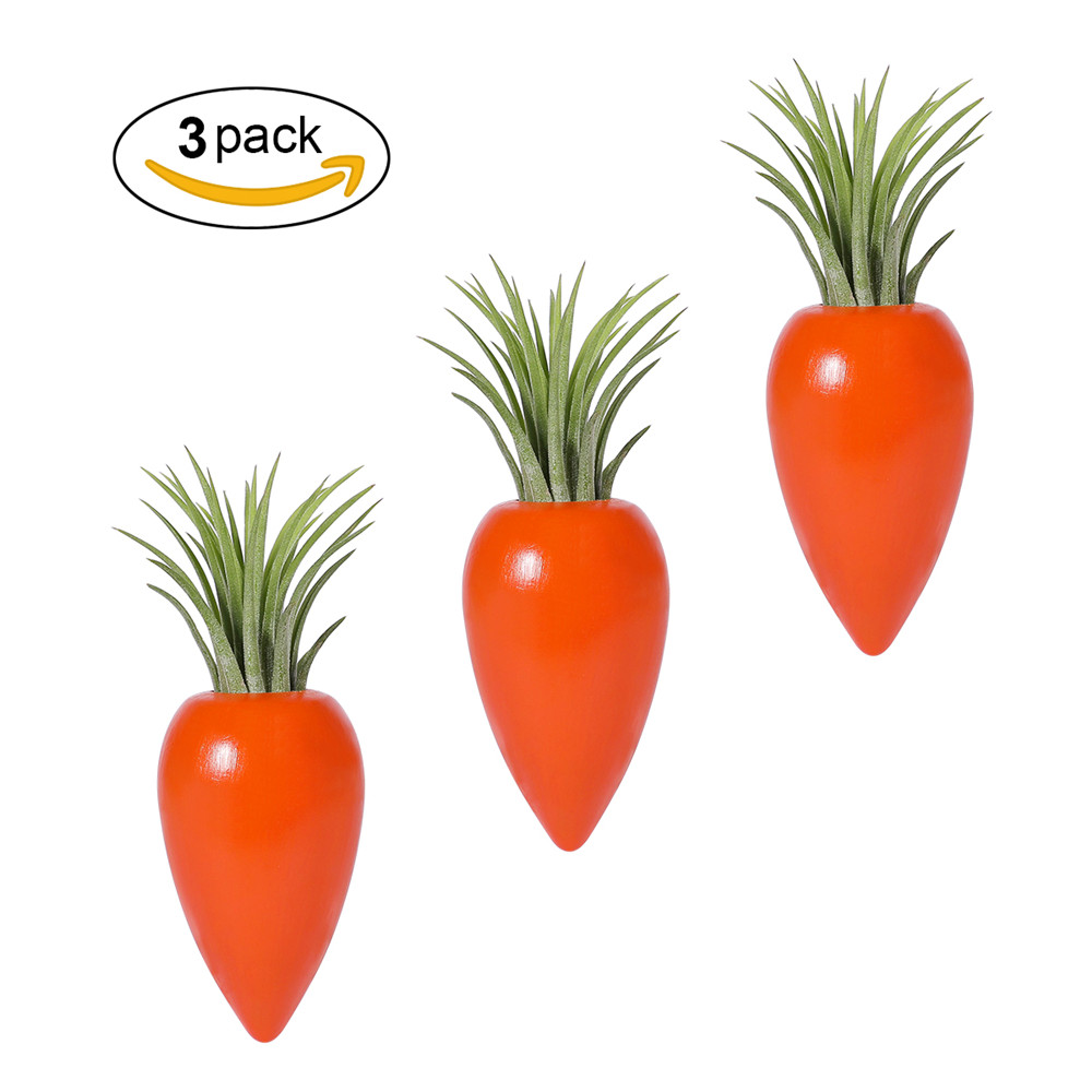 Aieve Air Plant Holder,3 Pack Carrot Shape Wooden Air Plant Holders Container Plant Stand Pot with Air Plants and Mini Spray Bottles for Hanging Air Plants Small Tillandsia Indoor Wall Home Décor